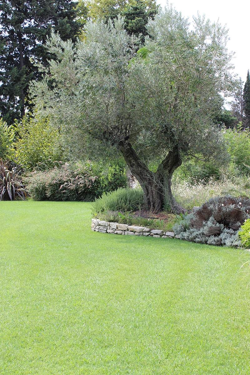 Aménagement Paysager Alpilles Avignon Châteaurenard Saint Remy Provence Lubéron